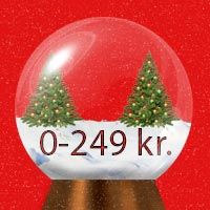 Julegaver under 250 kr.